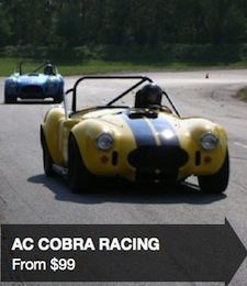 AC Cobra Gifts