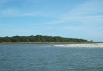 barrier islands tour GA