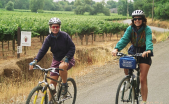 healdsburg bike tour