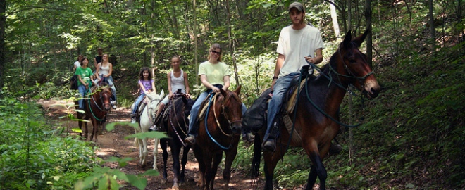 west virginia horse riding