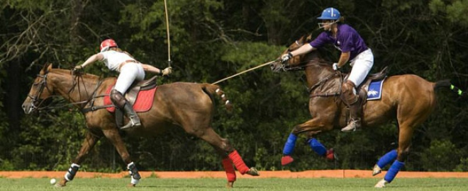 polo lessons atlanta
