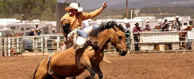 Bareback Bronc