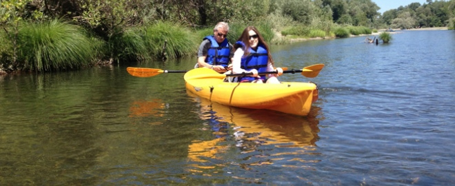 guided kayak tour sf