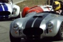 race an ac cobra gift