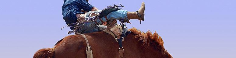 Rodeo Schools Bull Riding School Great American Days